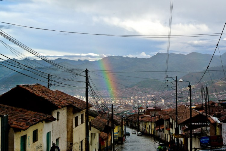 high flyer rainbows
