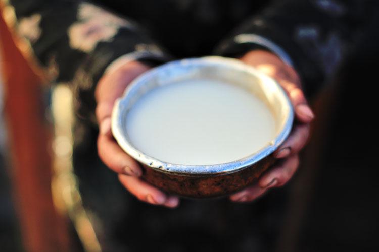 Airak, fermented mare's horse milk