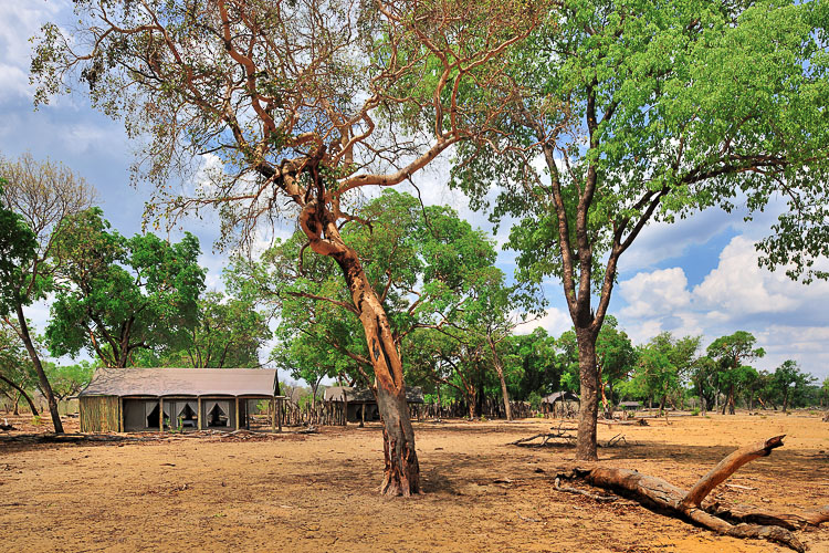 Wilderness Safaris Davisons Camp, Zimbabwe