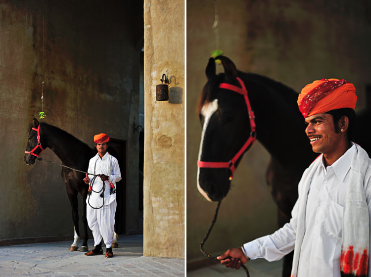 our guides posing with Marwari horses at Mihir Garh Hotel