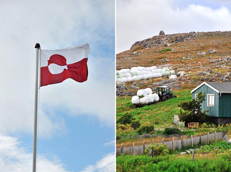 Experimental Farm - Greenland